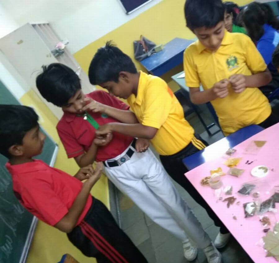 Science Spices Activity - School Photo Gallery Bal Bhawan School